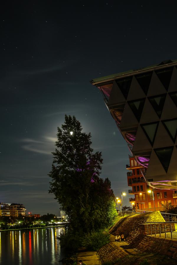 Citylights-10_i.jpg